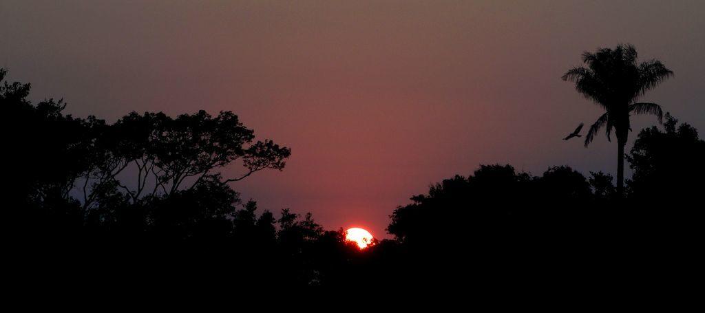 Lever de soleil à Rurrenabaque